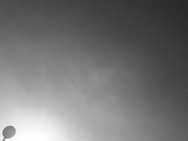 IMG02919-20121128-1540
