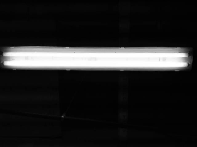 IMG02985-20121201-2057