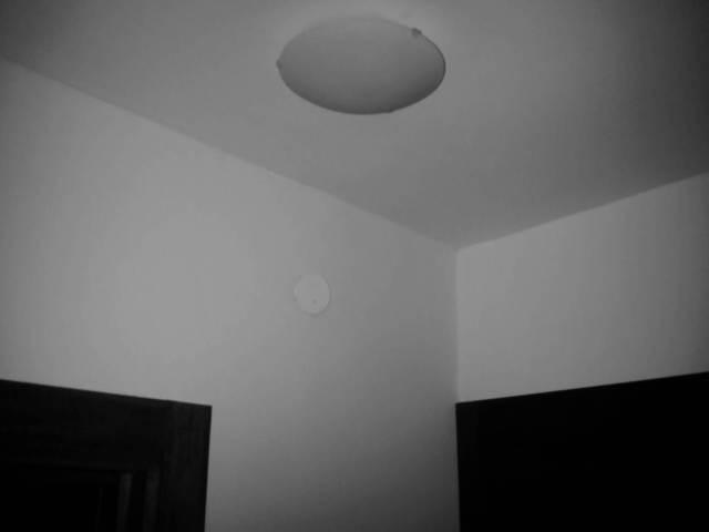 IMG03979-20130128-1853