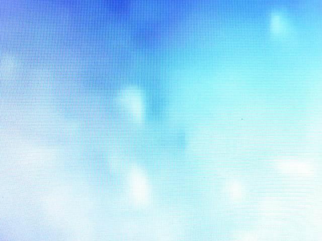 IMG04174-20130201-2240