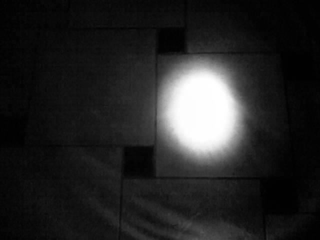 IMG04443-20130215-2359